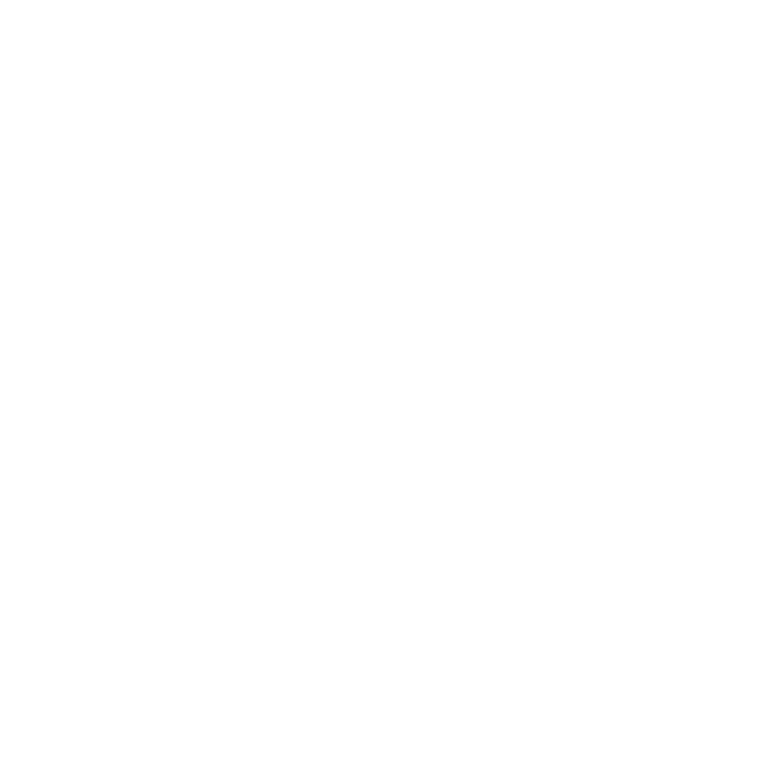 logo authenthicine